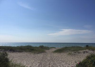 Beach Water Calmness